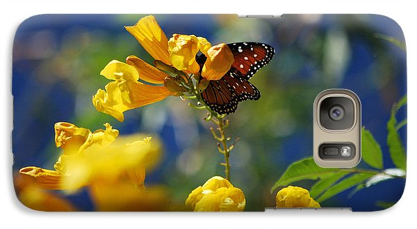 Galaxy Case featuring the photograph Butterfly Pollinating Flowers  by Donna Greene