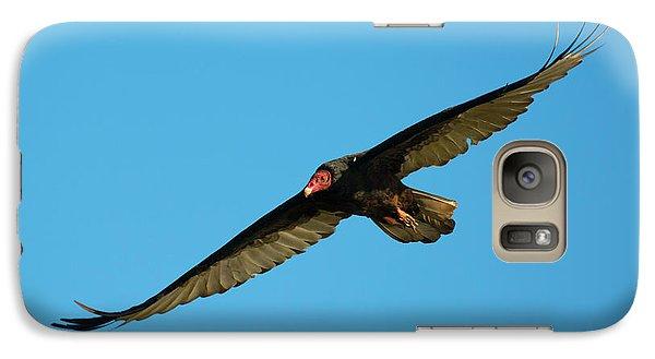 Buzzard Galaxy S7 Case - Buzzard Circling by Mike Dawson