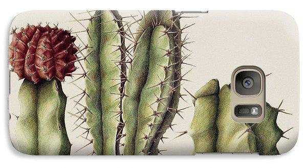 Desert Galaxy S7 Case - Cacti by Annabel Barrett