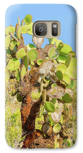 Galaxy Case featuring the photograph Cactus Trees In Galapagos Islands by Marek Poplawski