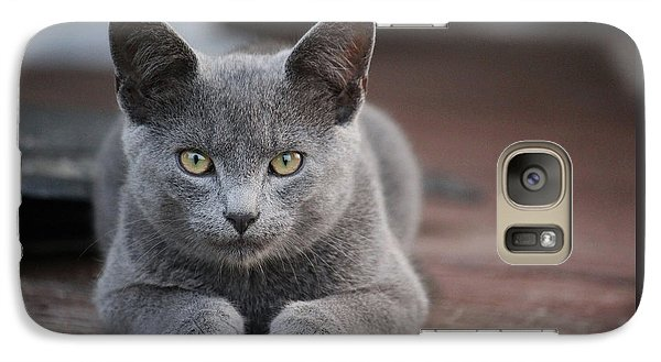 Galaxy Case featuring the photograph Caesar by Rowana Ray