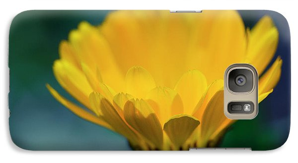 Galaxy Case featuring the photograph Calendula by Sharon Mau