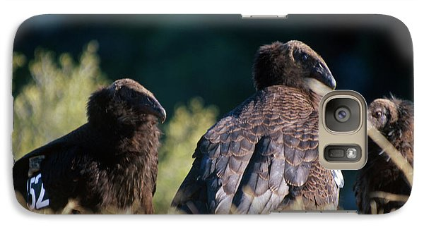 California Condors Galaxy S7 Case by Soli Deo Gloria Wilderness And Wildlife Photography