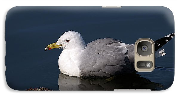 Galaxy Case featuring the photograph California Gull by Sharon Talson