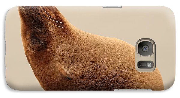 Galaxy Case featuring the photograph California Sea Lion In Angle Of Repose by Max Allen