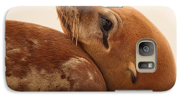 Galaxy Case featuring the photograph California Sea Lion Pup Resting Against Mother by Max Allen
