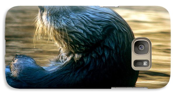 Galaxy Case featuring the photograph California Sea Otter by Jan Cipolla