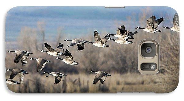 Canada  Geese Flock Galaxy S7 Case by Mike Dawson