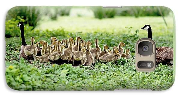 Geese Galaxy S7 Case - Canada Gosling Daycare by Rona Black