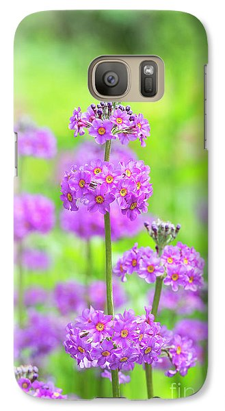 Galaxy Case featuring the photograph Candelabra Primula by Tim Gainey