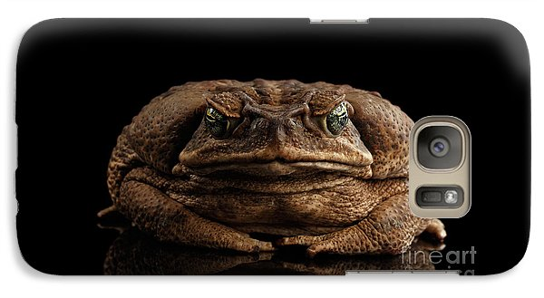 Cane Toad - Bufo Marinus, Giant Neotropical Or Marine Toad Isolated On Black Background, Front View Galaxy S7 Case