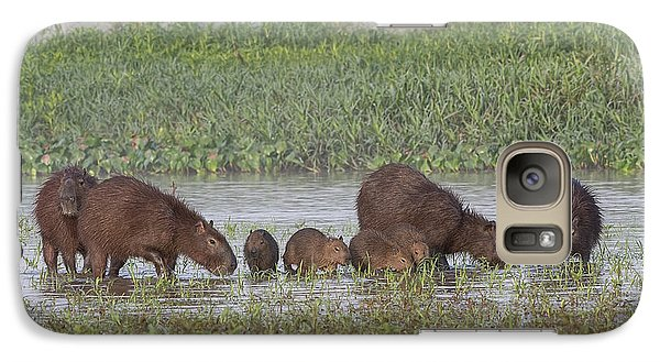 Galaxy Case featuring the photograph Capybara by Wade Aiken