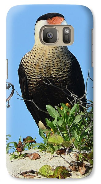 Galaxy Case featuring the photograph Caracara Portrait by Debra Martz