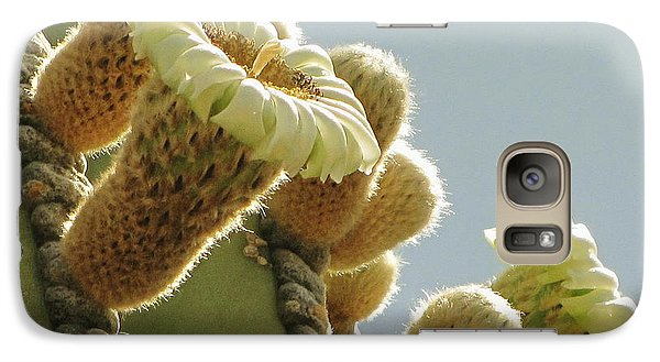 Galaxy Case featuring the photograph Cardon Cactus Flowers by Marilyn Smith