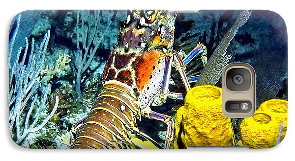 Galaxy Case featuring the photograph Caribbean Reef Lobster by Amy McDaniel