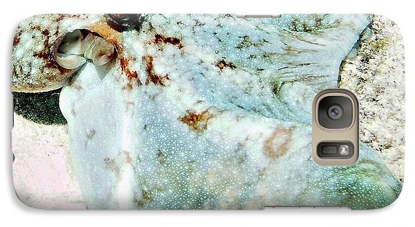 Galaxy Case featuring the photograph Caribbean Reef Octopus - Eyes Of The Deep by Amy McDaniel