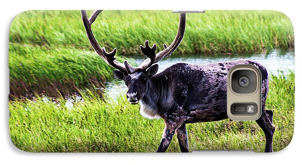Galaxy Case featuring the photograph Caribou by Anthony Jones