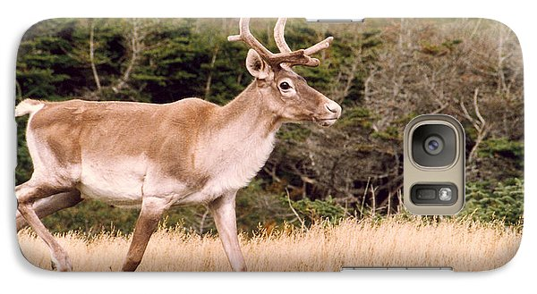 Galaxy Case featuring the photograph Caribou by Mary Mikawoz