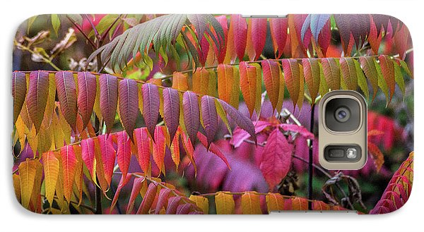 Galaxy S7 Case featuring the photograph Carnival Of Autumn Color by Bill Pevlor