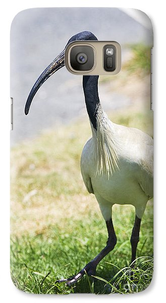 Carpark Ibis Galaxy S7 Case by Jorgo Photography - Wall Art Gallery