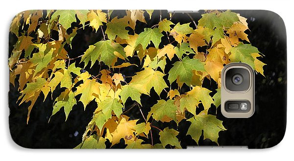 Galaxy Case featuring the photograph Cascading Leaves by Doris Potter