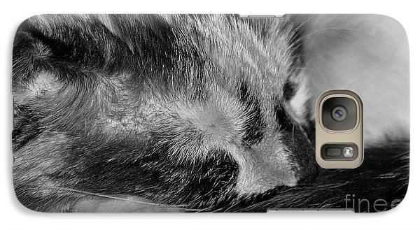 Galaxy Case featuring the photograph Cat Nap by Juls Adams