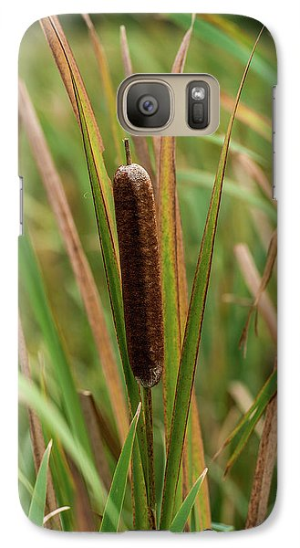 Galaxy Case featuring the photograph Cat Tail by Paul Freidlund