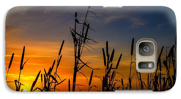 Galaxy Case featuring the photograph Cat Tails At Sunrise  by John Harding