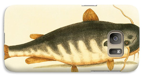Catfish Galaxy S7 Case - Catfish by Mark Catesby