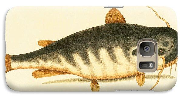 Catfish Galaxy S7 Case by Mark Catesby