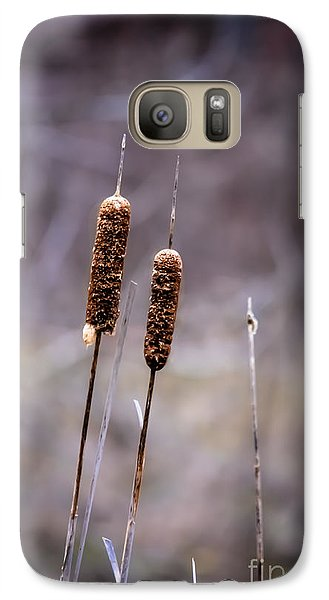 Galaxy Case featuring the photograph Cattails by Brenda Bostic