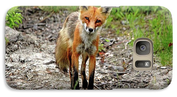 Galaxy Case featuring the photograph Cautious But Curious Red Fox Portrait by Debbie Oppermann