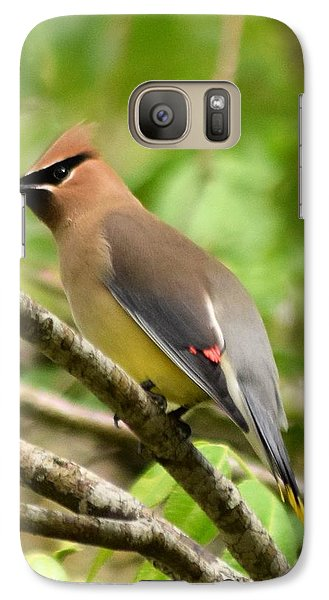Cedar Wax Wing 1 Galaxy Case by Sheri McLeroy
