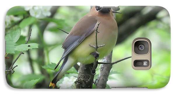 Cedar Wax Wing Galaxy Case by Alison Gimpel