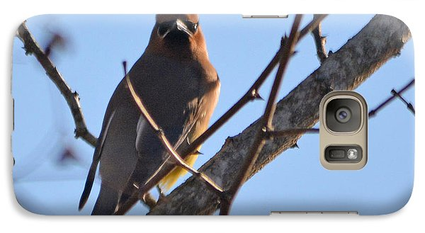 Cedar Wax Wing On The Lookout Galaxy S7 Case by Barbara Dalton