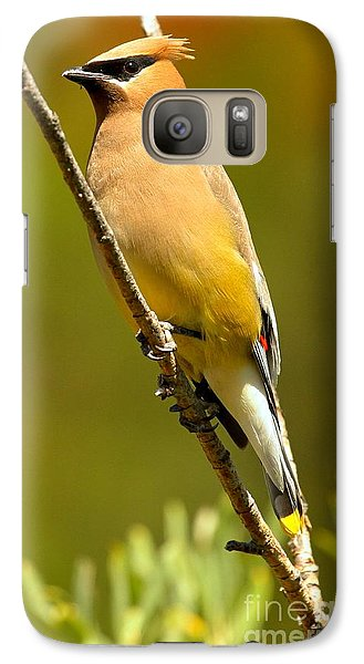 Cedar Waxwing Galaxy S7 Case by Adam Jewell