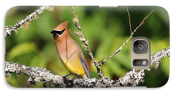 Cedar Waxing Galaxy S7 Case - Cedar Waxwing  by Carol Montoya