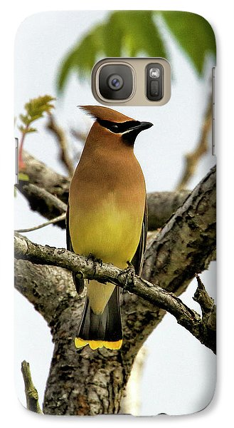 Cedar Waxing Galaxy S7 Case - Cedar Waxwing - Spring Visitor by Geraldine Scull