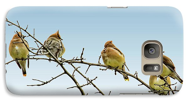 Cedar Waxwings Galaxy Case by Geraldine Scull