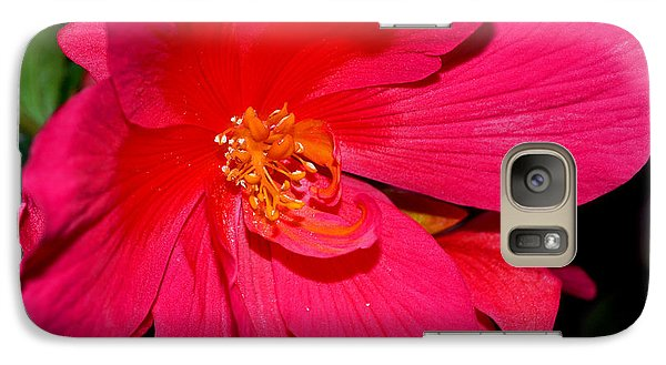 Galaxy Case featuring the photograph Centerpiece - Pink Begonia 007 by George Bostian