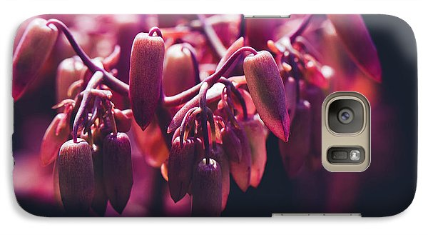 Galaxy Case featuring the photograph Chandelier Plant Kalanchoe - A Solitary Morning by Sharon Mau