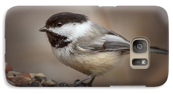 Galaxy Case featuring the photograph Cheeky Chickadee by Debby Herold
