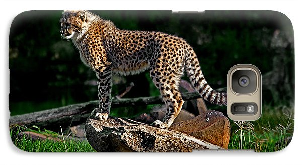 Cheetah Cub Finds Her Pride Rock Galaxy S7 Case by Miroslava Jurcik