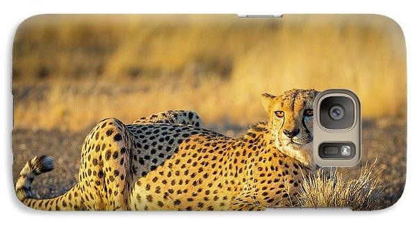 Cheetah Portrait Galaxy S7 Case