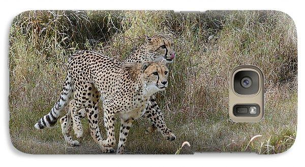 Galaxy Case featuring the photograph Cheetah Trot by Fraida Gutovich