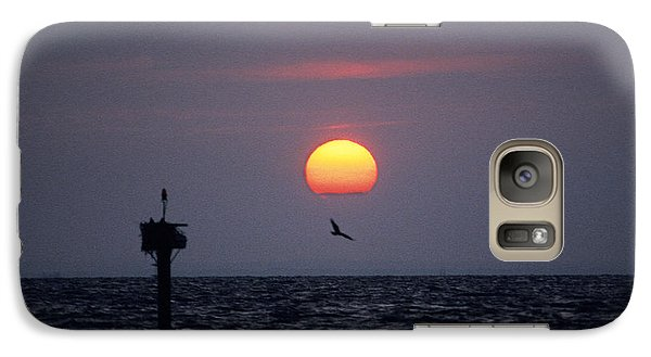 Galaxy Case featuring the photograph Chesapeake Bay Osprey 14o by Gerry Gantt
