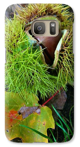 Galaxy Case featuring the photograph Chestnut Fresh From The Tree by Polly Castor