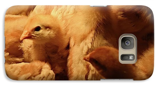 Galaxy Case featuring the photograph Chicks by Mary Machare