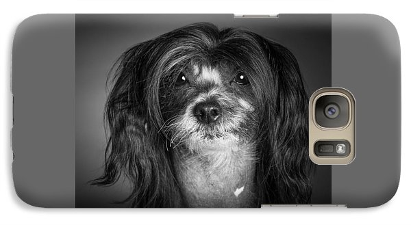 Galaxy Case featuring the photograph Chinese Crested - 02 by Larry Carr