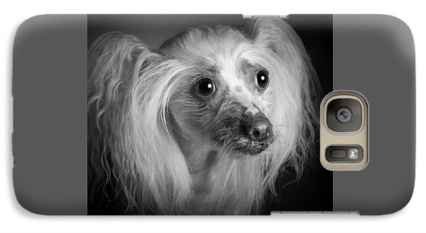 Galaxy Case featuring the photograph Chinese Crested - 04 by Larry Carr